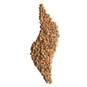 Barley Grain - Pearl 1x25kg